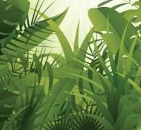 JungleGrowth